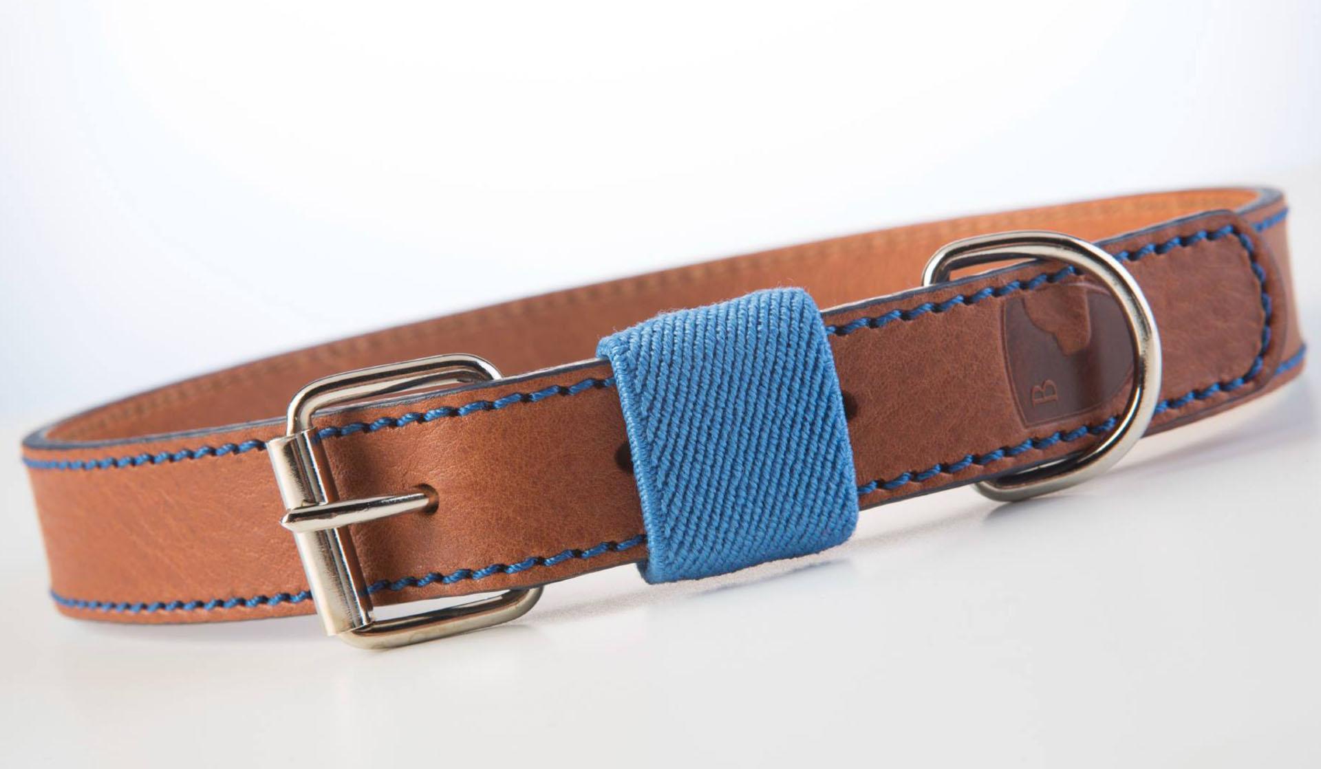 Hundehalsband-buddysdogwear-classic-blue-dog-collar