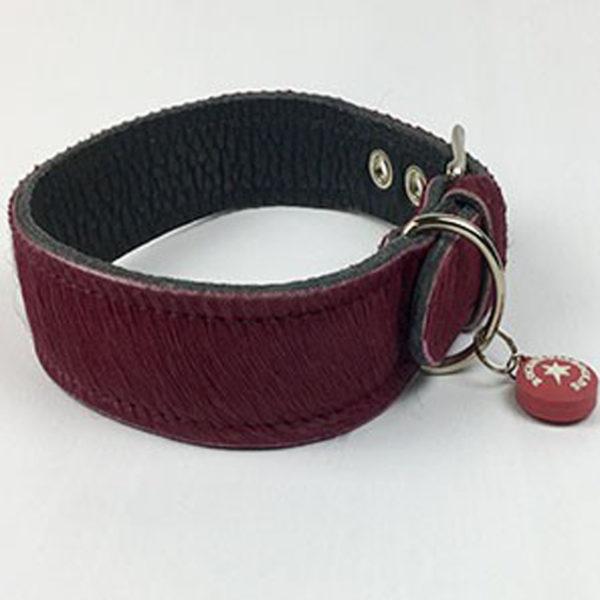 Hundehalsband-sale-rock'n'-roll-dogs
