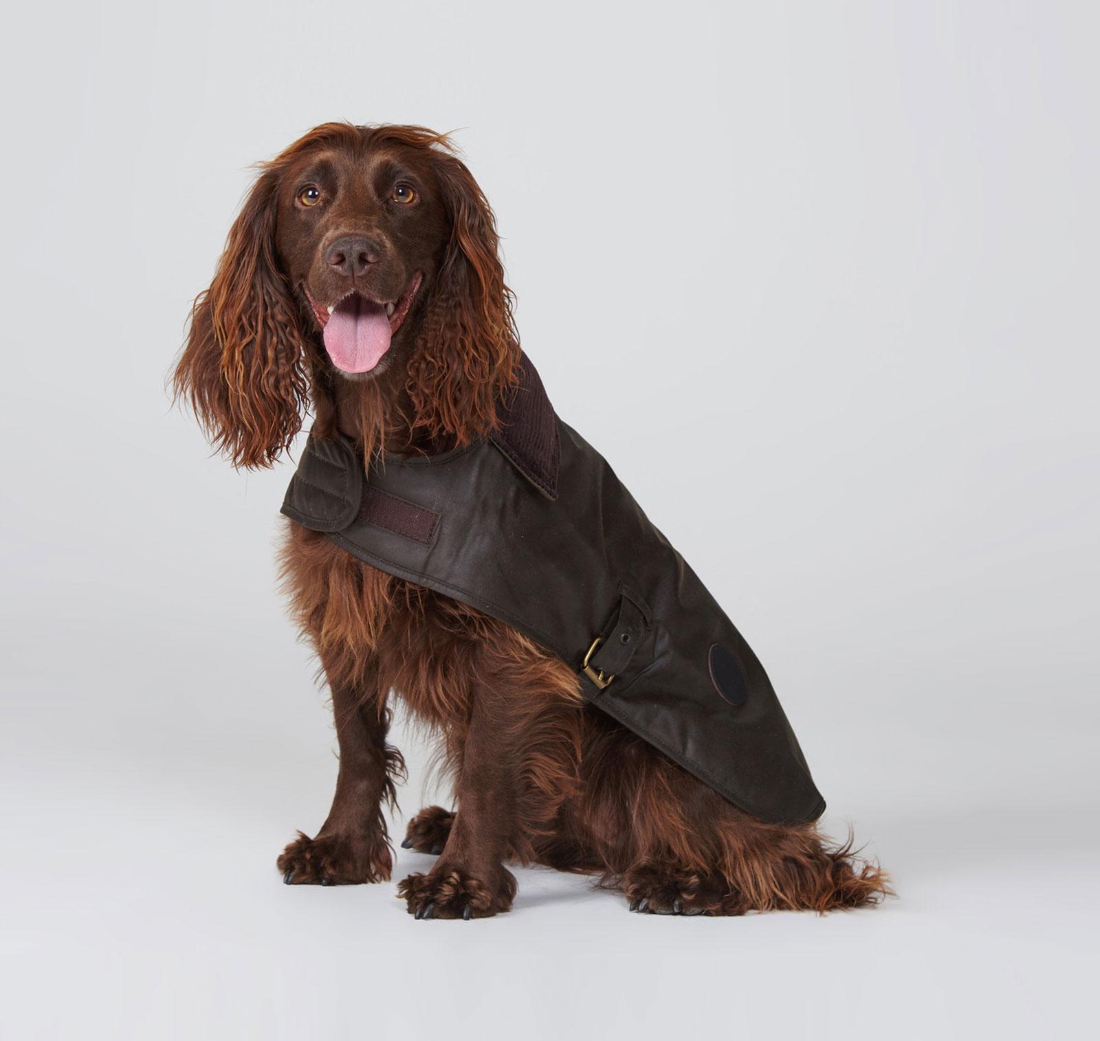 Hundemantel-barbour-wax-dog-coat