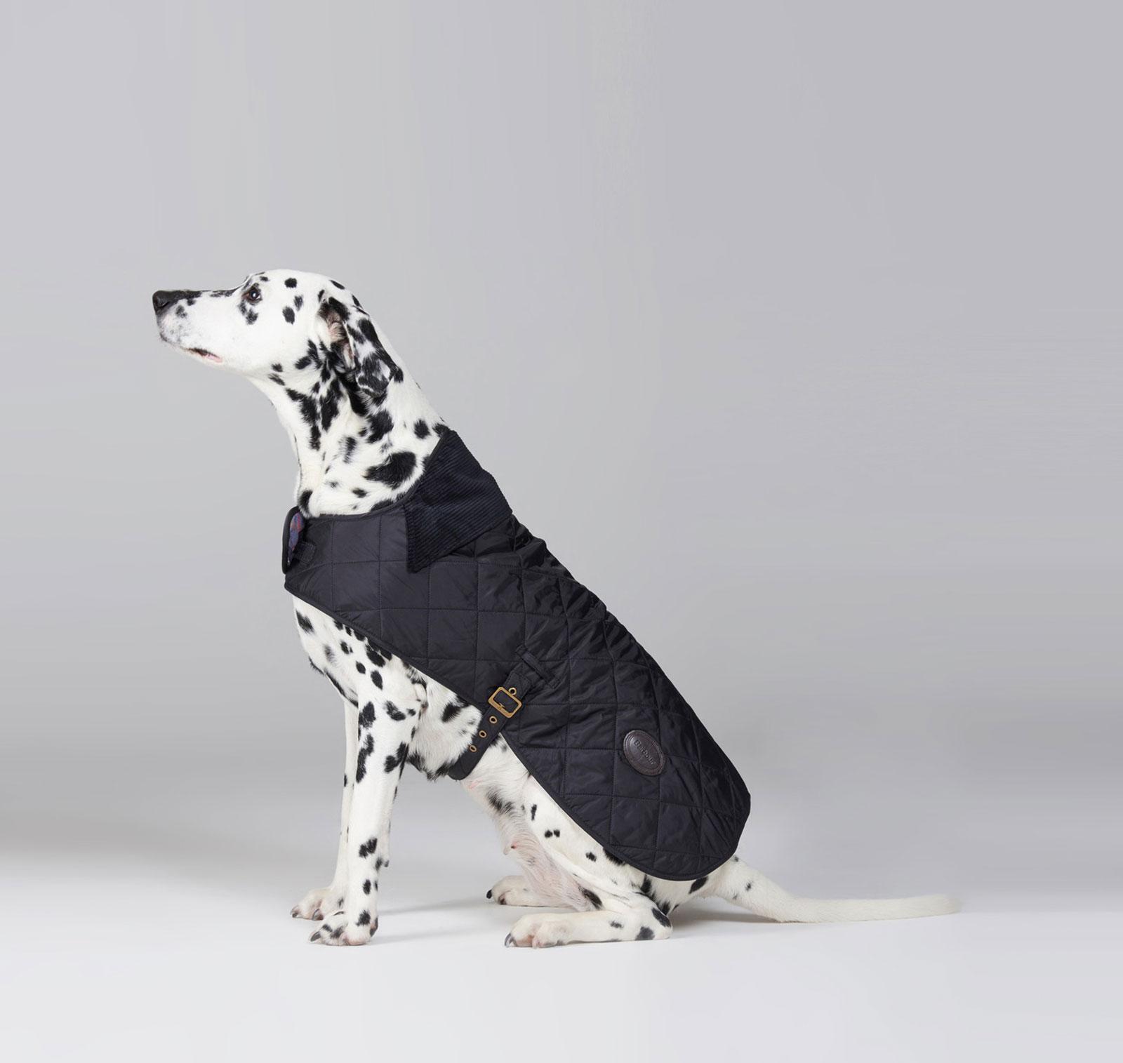 Hundemantel-barbour-quilted-boy-dog-coat