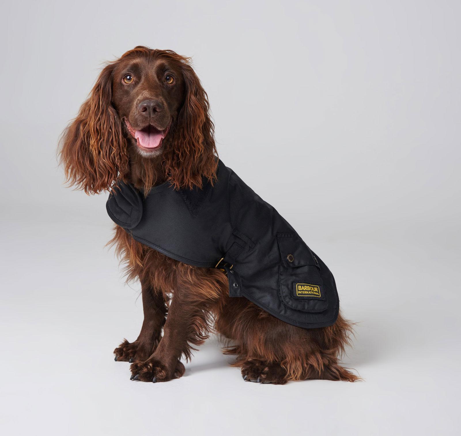 Hundemantel-barbour-polar-dog-coat-schwarz