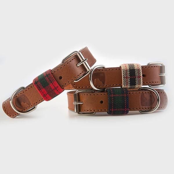 Hundehalsband-buddysdogwear-edimburgh-green-dog-collar