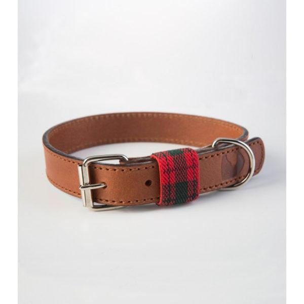 Hundehalsband-buddysdogwear-edimburgh-red-dog-collar