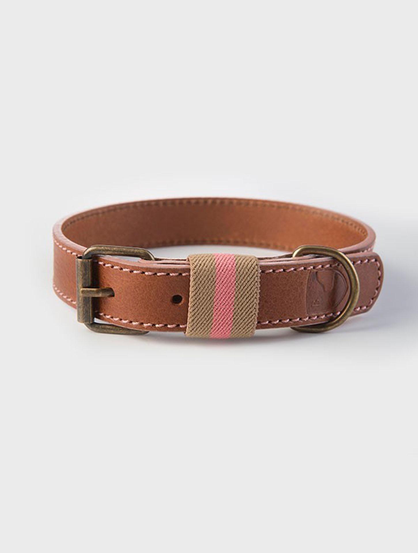 Hundehalsband-buddysdogwear-pink-navy-dog-collar