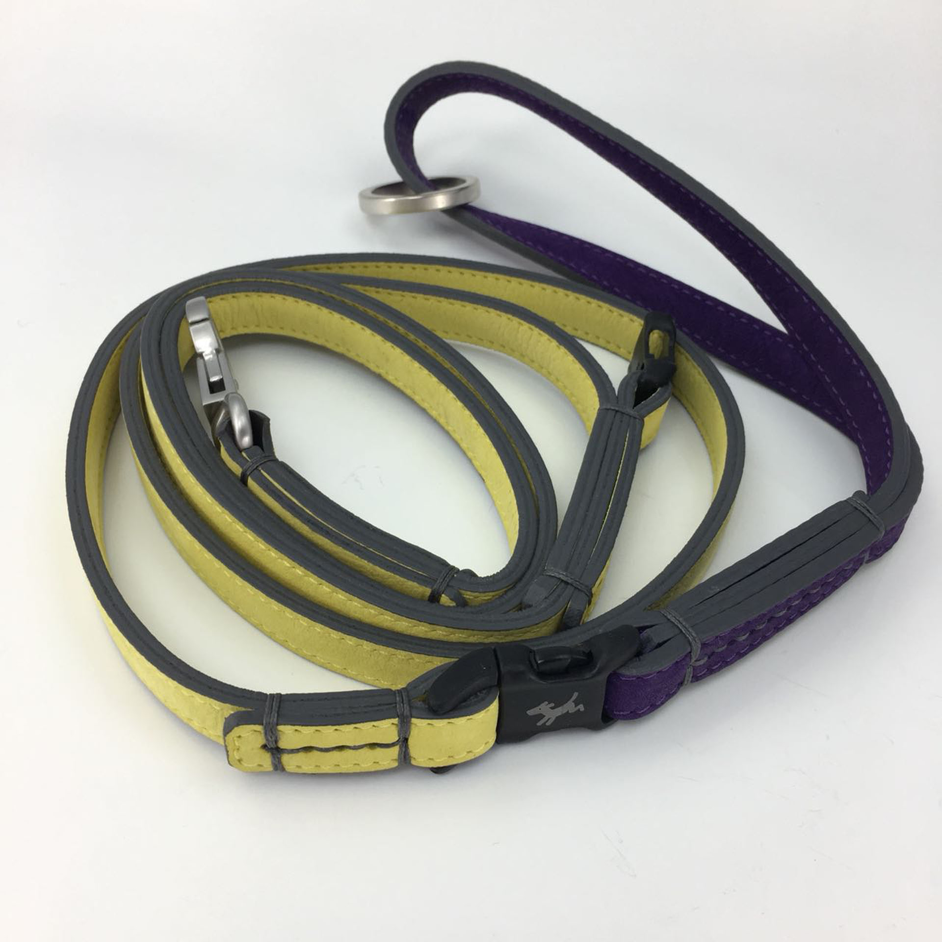 Hundeleine-schröders-hund-lila-gelb