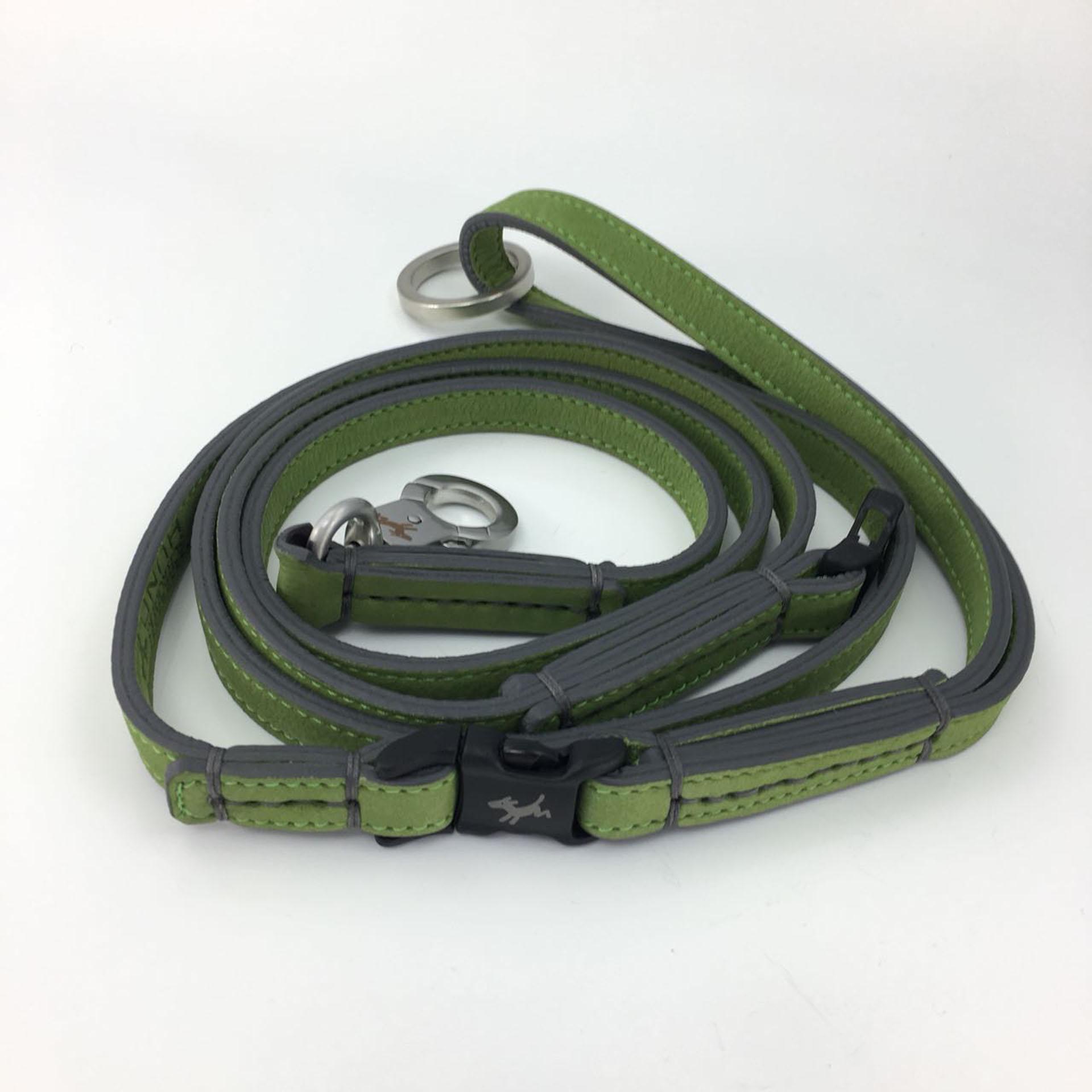 Hundeleine-schröders-hund-grün