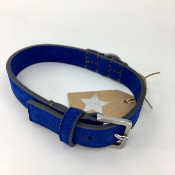 Hundehalsband-schröders-hund-blau