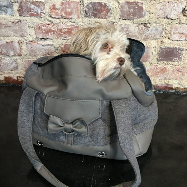 Hundetasche-produkt-dogs-in-the-city-taupe-grau